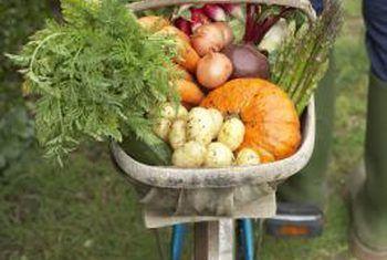 Watter groente word die meeste met chemikalieë gespuit?