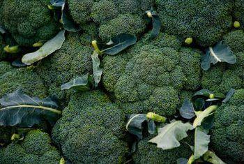 Hoekom is my broccoli koppe nie styf nie?