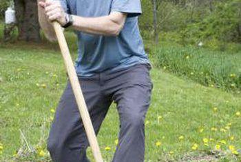 Hoe om `n bio-intensiewe tuin te ontwerp