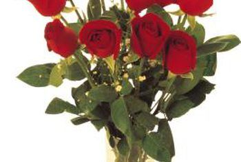 Hoe plantluise verwyder word van sny rose
