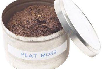 Tuisgemaakte soilless bemesting mengsel