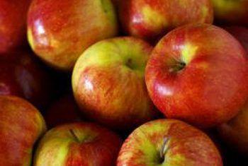 Advies oor die groei van appelbome