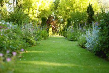Reghoekige tuinontwerpplan