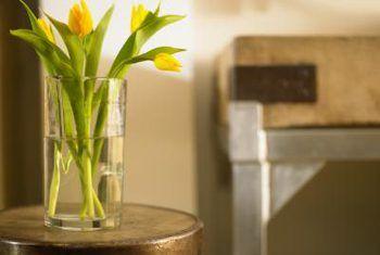 Wat beteken dit wanneer tulpe buig?